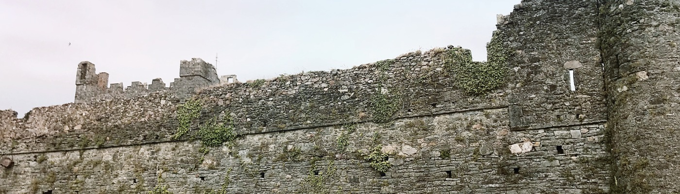 Wexford Ireland's Ancient East